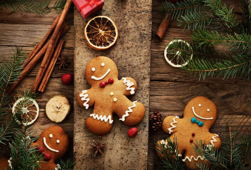 gluten free gingerbread cookies on wood background